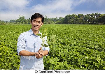 ficar, seu, chinês, fazenda, sapling, segurando, agricultor