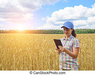 ficar, trigo, jovem, campo amarelo, bonito, agricultor, menina