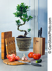 Ficus a bonsai near a window about blinds, tomatoes, garlic,...