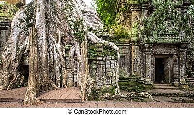 ancient ruins of Ta Prohm