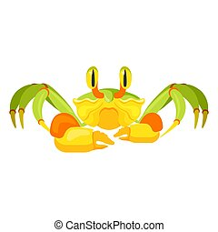 Fiddler crab with five pair of legs and funny eyes. Wildlife ghost crabs in cartoon style, marine animal isolated on vector illustration, cute childish shellfish