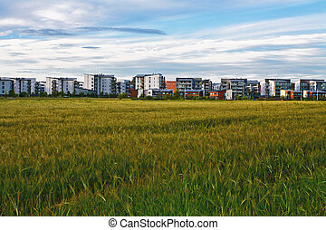 Field and buildings