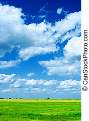 field and cloudy sky