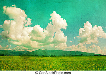 Field and sky, vintage background