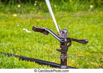 field;, arroseuse pelouse, système irrigation, haut, eau, pulvérisation, fin