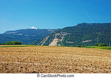 Field at Yverdon in Jura Nord Vaudois Vaud Swiss - Field in...