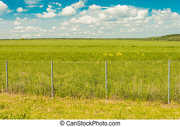 Field behind the fence against the sky with clouds and forests