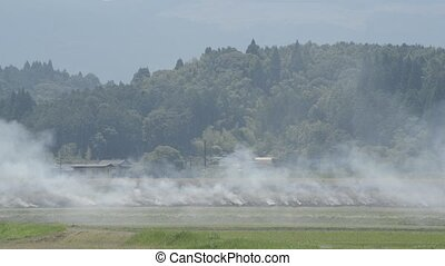 Field burning of embankment with smoke over in front of...