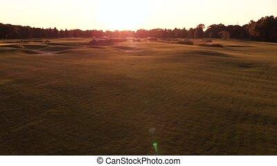 field., coucher soleil, herbe, cahoteux, éclat
