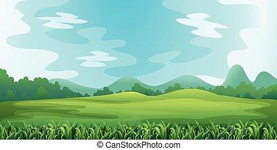 Field - Illustration of a green field