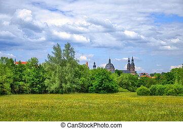 Field in Aueweiher Park  in Fulda, Hessen, Germany