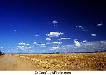 Field in Montana - Field after harvest in Montana