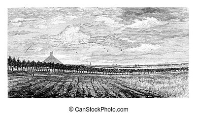 Field in Waterloo, Belgium, drawing by Taelemans, vintage illustration. Le Tour du Monde, Travel Journal, 1881