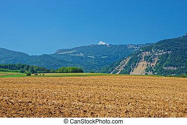 Field in Yverdon at Jura Nord Vaudois Vaud Switzerland -...