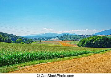 Field in Yverdon of Jura Nord Vaudois Vaud Switzerland -...