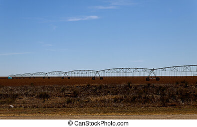 Field irrigated by a pivot sprinkler system