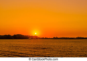 Field landscape with a sunrise