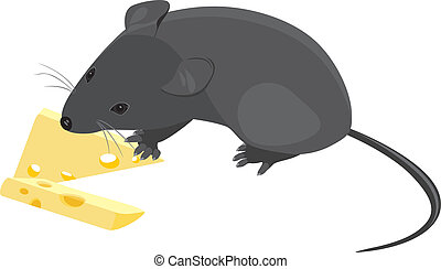 Field mouse with pieces of cheese