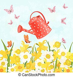 field of blooming daffodils cute a can watering for your design
