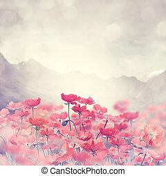 Poppy Flowers - Field Of Bright Red  Poppy Flowers
