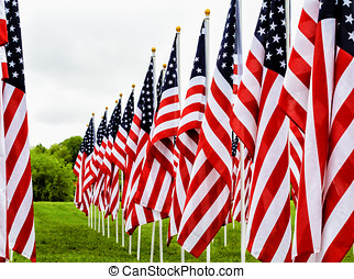Field of Flags in a row - Near to far row of American Flags...