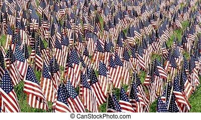 Field of Flags Loop