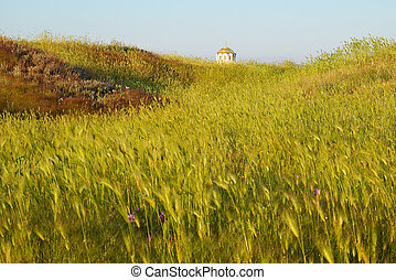 Field of grass and the temple. Antique Chersonesos.