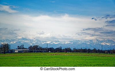 Field of green fresh grass under blue sky and sun beam.