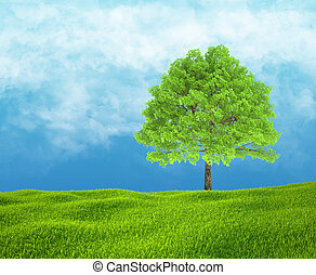 Field of green grass and sky with one tree.