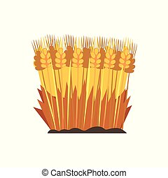 Field of ripe wheat, design element for bakery vector Illustration on a white background