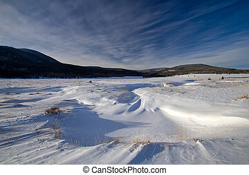 Field of Snow in Utah