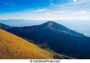 field on hillside in mountains