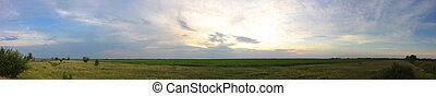 field panoramic view