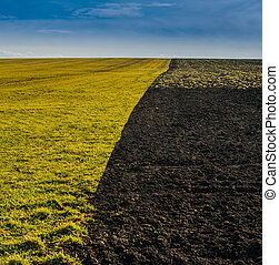 Field plowed half with soil on one side and grass on another - partition and boundary