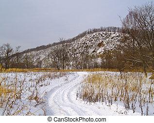 Field road in the winter
