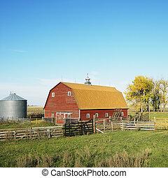 field., rojo, cerca, granero