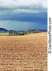 field rural