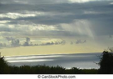 Field Sea Clouds