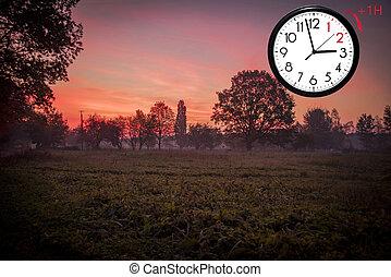 field., soir, arbres, vert, automne, tard, coucher soleil