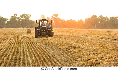 field., tracteur, paysan