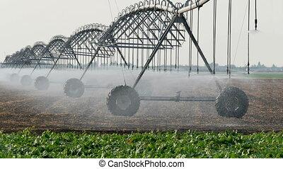 Field watering equipment splashing water - Sprinklers at...