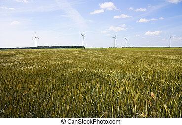 field, wind generators