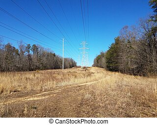 field with brown grasses and metal tower with power lines and path