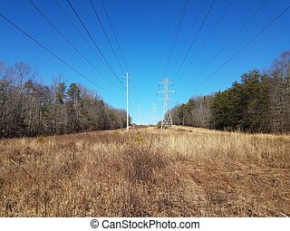 field with brown grasses and metal tower with power lines