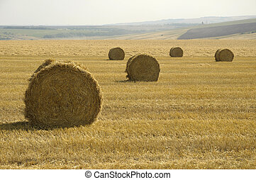 field with five rolls of straw