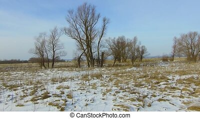Field with grass frozen and snow away Russia outdoors dead...