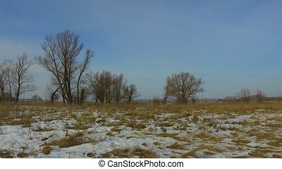 Field with grass frozen and snow away the Russia dead...