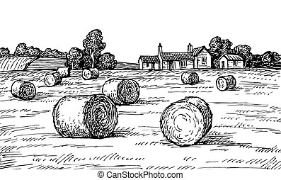 Rural landscape with hay bales. Wheat field and farm. Countryside scenery. Retro style.