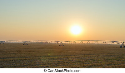 Field with irrigation system at sunset