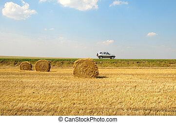 field with three rolls of straw